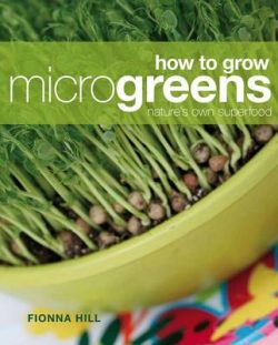 How to Grow Microgreens: Nature's Own Superfood