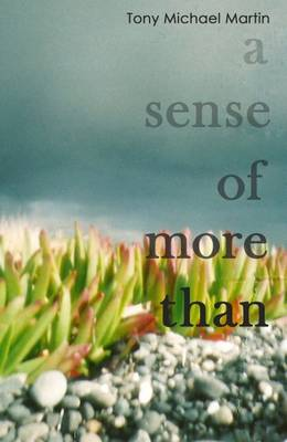 A Sense of More Than: Stories of Consciousness