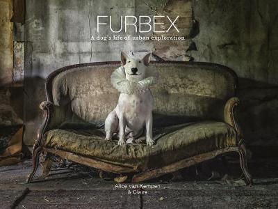 Furbex: A Dog's Life of Urban Exploration