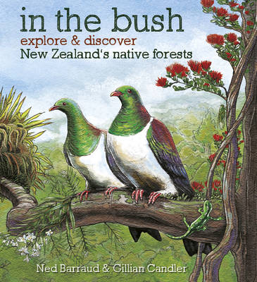 In the Bush: Explore & Discover New Zealand's Native Forests