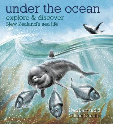 Under the Ocean: Explore & Discover New Zealand's Sea Life