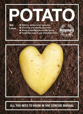 Potato: All you need to know in one concise manual