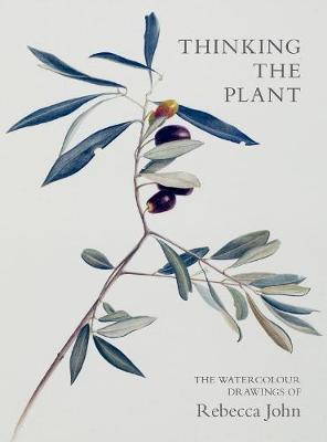Thinking the Plant: The Watercolour Drawings of Rebecca John