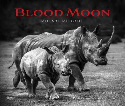 Blood Moon: Rescuing the Rhino