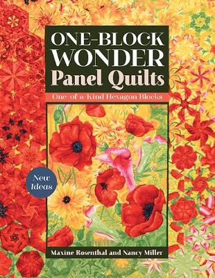 One-Block Wonder Panel Quilts: New Ideas; One-of-a-Kind Hexagon Blocks