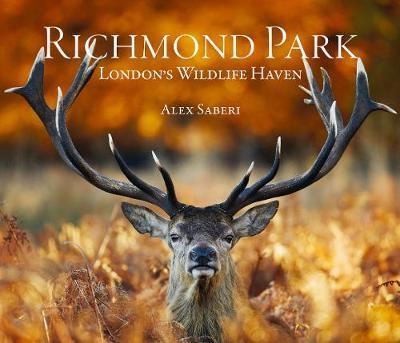 Richmond Park: London's Wildlife Haven