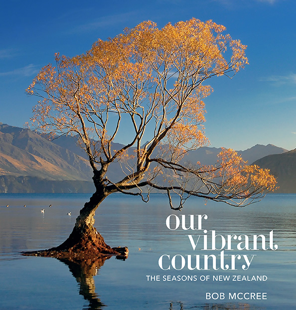 Our Vibrant Country Seasons Of New Zealand