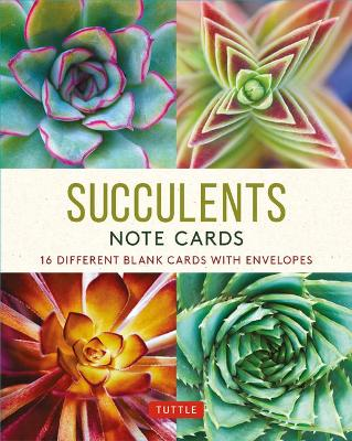 Succulents – 16 Note Cards